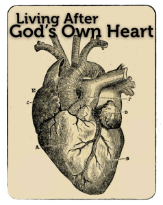 Promo Card - Living After God's Own Heart Series